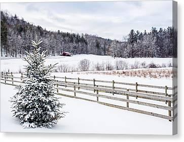 Winter Morn On The Farm Canvas Print by Rob Travis