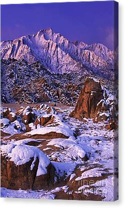 Winter Morning Alabama Hills And Eastern Sierras Canvas Print by Dave Welling