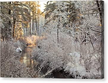 Winter Morning Canvas Print by Larry Landolfi