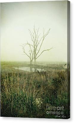 Winter Morning Londrigan 1 Canvas Print by Linda Lees