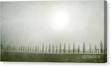 Winter Morning Londrigan 7 Canvas Print by Linda Lees
