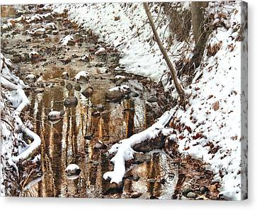 Winter - Natures Harmony Canvas Print by Mike Savad