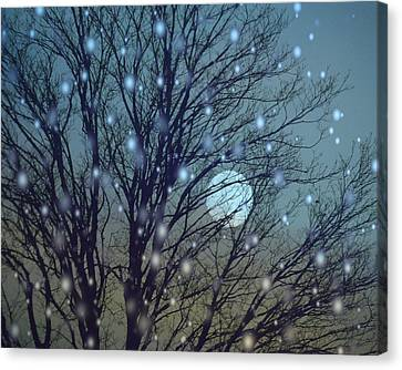 Winter Night Sky Canvas Print by Gothicolors Donna Snyder