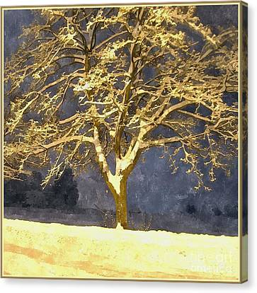 Winter Night - Snowy Tree Canvas Print by Jutta Wolfram