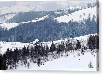 Winter Picture I Canvas Print by Nedelcu Valeriu