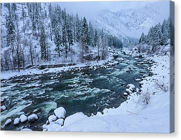 Winter Playground Canvas Print by Dan Mihai