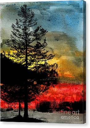 Winter Poise Canvas Print by R Kyllo