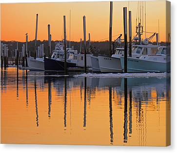 Winter Reflection Canvas Print by Amazing Jules