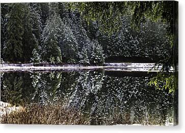 Winter Reflection Canvas Print by Timothy Latta