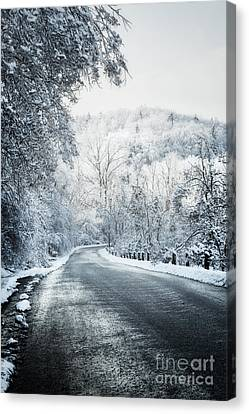 Winter Road In Forest Canvas Print by Elena Elisseeva