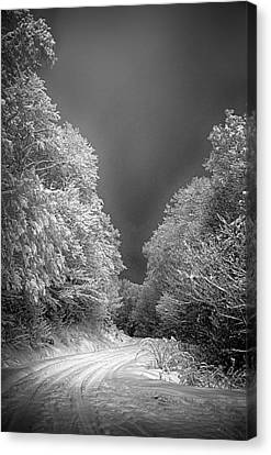Winter Road Canvas Print by John Haldane
