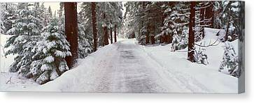 Winter Road Near Lake Tahoe, California Canvas Print by Panoramic Images