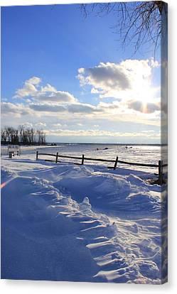 Winter Shore Canvas Print by Bill Robinson