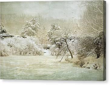 Winter Silence Canvas Print by Julie Palencia
