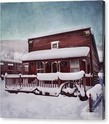 Winter Sleep Canvas Print by Priska Wettstein