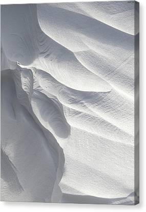 Winter Snow Drift Sculpture  Canvas Print by Phil Perkins