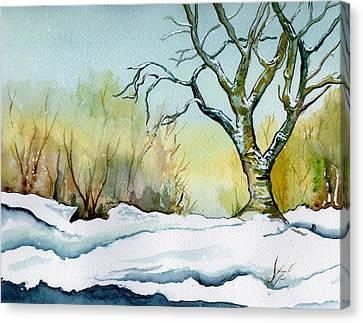 Winter Solitude Canvas Print by Brenda Owen