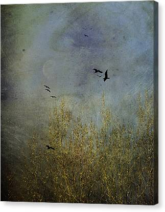 Winter Song Canvas Print by Diane Schuster