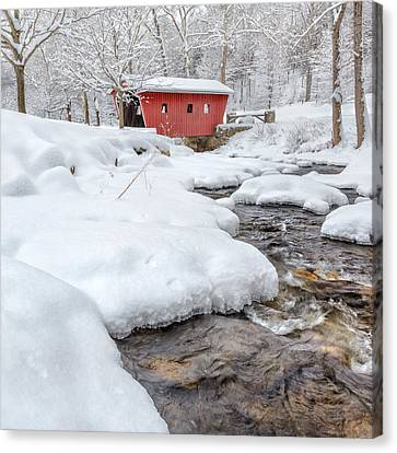 Winter Stream Square Canvas Print by Bill Wakeley
