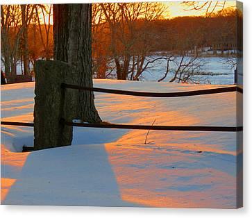Winter Sunrise Glow Canvas Print by Dianne Cowen