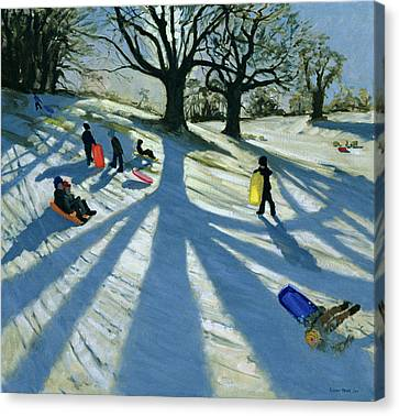 Winter Tree Canvas Print by Andrew Macara