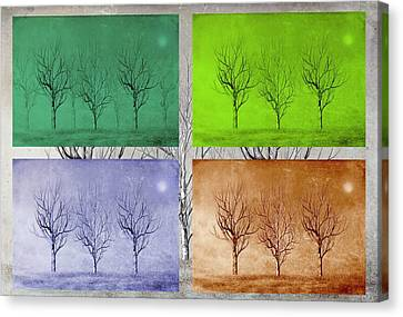 Winter Trees  Canvas Print by David Dehner