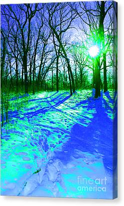 Winter Walk  Canvas Print by First Star Art