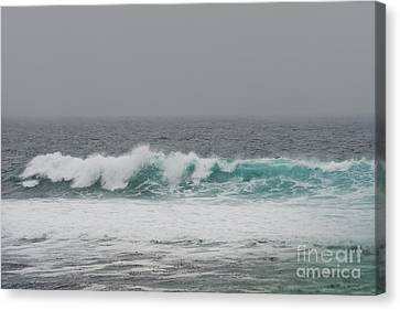 Winter Waves Canvas Print by Artist and Photographer Laura Wrede