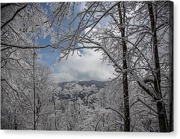 Winter Window Wonder Canvas Print by John Haldane