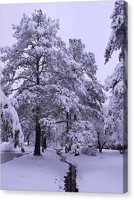 Winter Wonderland 3 Canvas Print by Mike McGlothlen