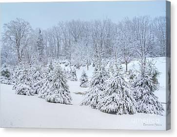 Winter Wonderland In West Virginia Canvas Print by Benanne Stiens
