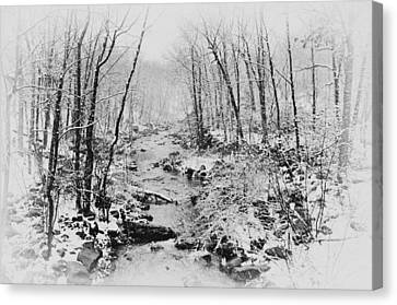 Winter Wonderland Canvas Print by Bill Cannon