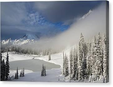 Winter Wonderland Canvas Print by Mike  Dawson