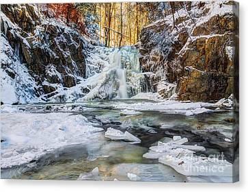 Winter Wonderland Canvas Print by Rick Kuperberg Sr