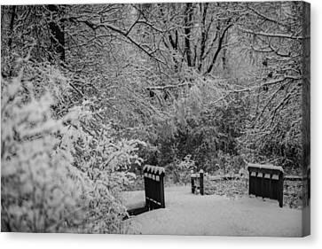 Winter Wonderland Canvas Print by Sebastian Musial