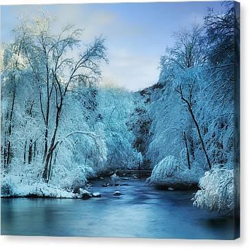 Winter Wonderland Canvas Print by Thomas Schoeller