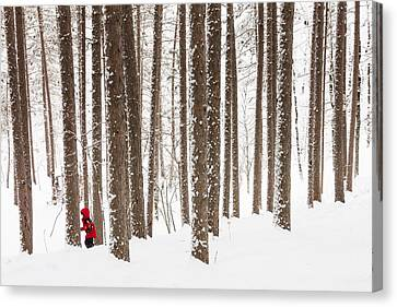 Winter Frolic Canvas Print by Mary Amerman