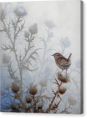 Winter Wren Canvas Print by Mike Stinnett