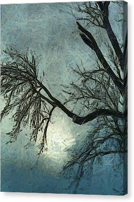 Winter's Embrace Canvas Print by Dan Sproul