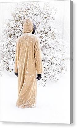 Winter's Tale II Canvas Print by Edward Fielding
