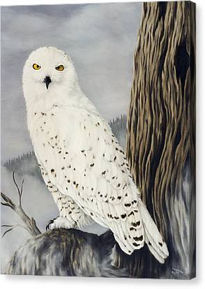 Winterwise Canvas Print by Rick Bainbridge