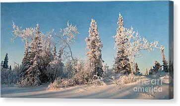Wintery Canvas Print by Priska Wettstein