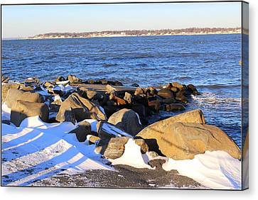 Wintry Day At The Bay Canvas Print by Dora Sofia Caputo Photographic Art and Design