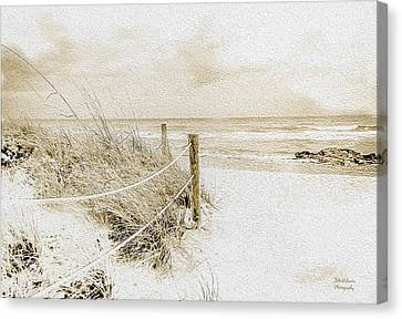 Wintry Day At The Beach  Canvas Print by Julie Palencia