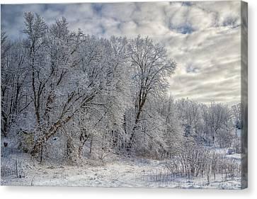Wisconsin Winter Canvas Print by Joan Carroll