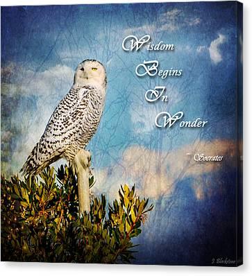 Wisdom Begins In Wonder Canvas Print by Jordan Blackstone