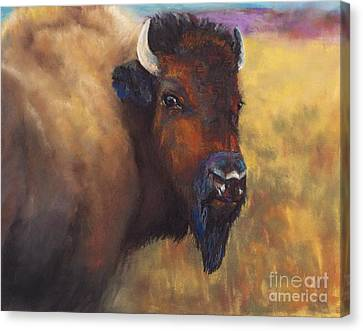 With Age Comes Beauty Canvas Print by Frances Marino