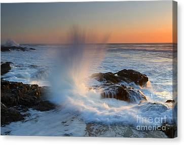 With Force Canvas Print by Mike  Dawson