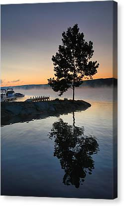 Witness To The Dawn Canvas Print by Steven Ainsworth