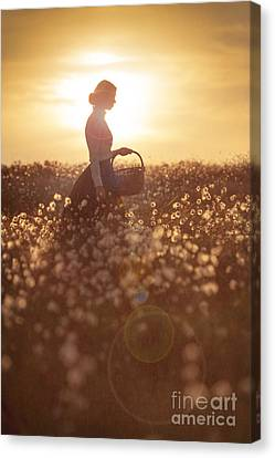 Woman With A Wicker Basket At Sunset Canvas Print by Lee Avison